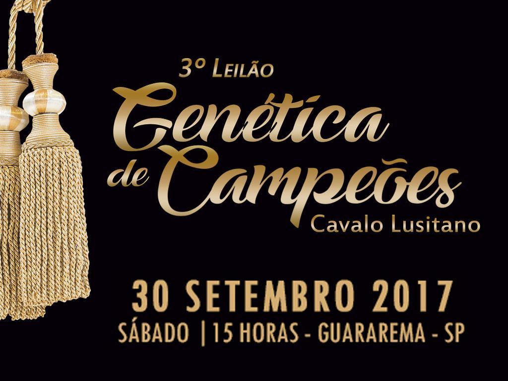 3º Leilão Genética de Campeões do Cavalo Lusitano acontece no mês de setembro
